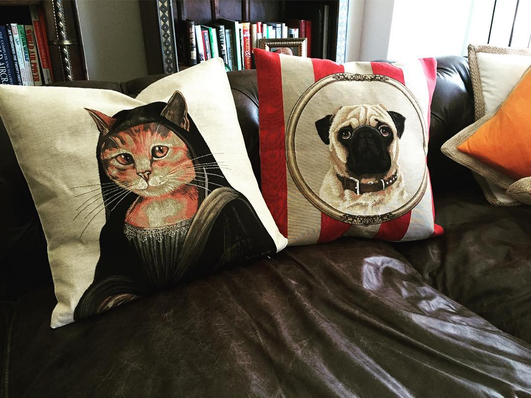 One needs proper distinguished pillows for one's comfy sofa.