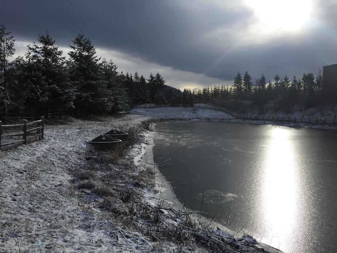 We found a frozen pond.