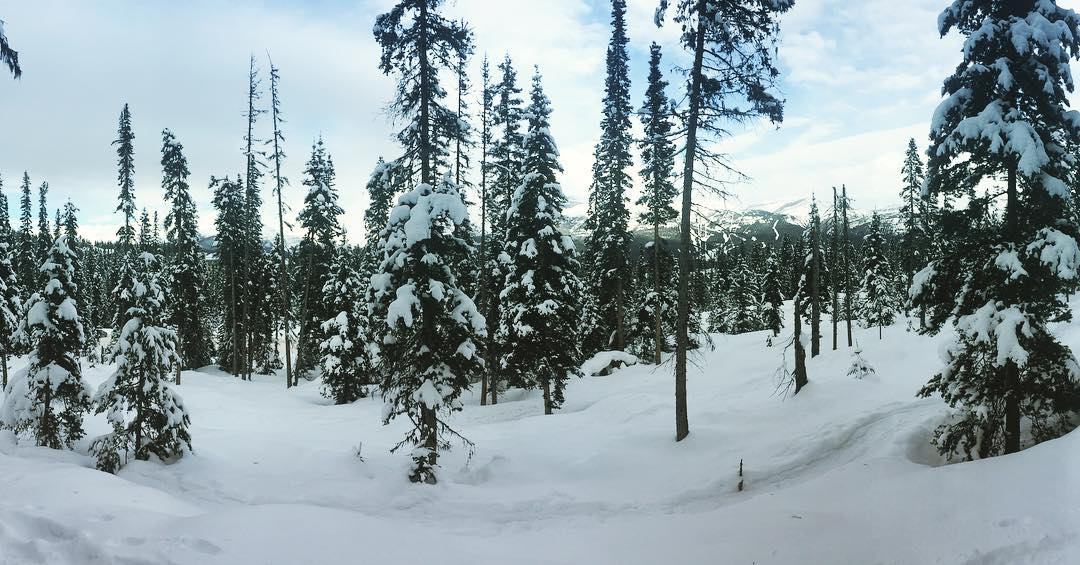 We break from snowshoeing for hot chocolate. And the view.