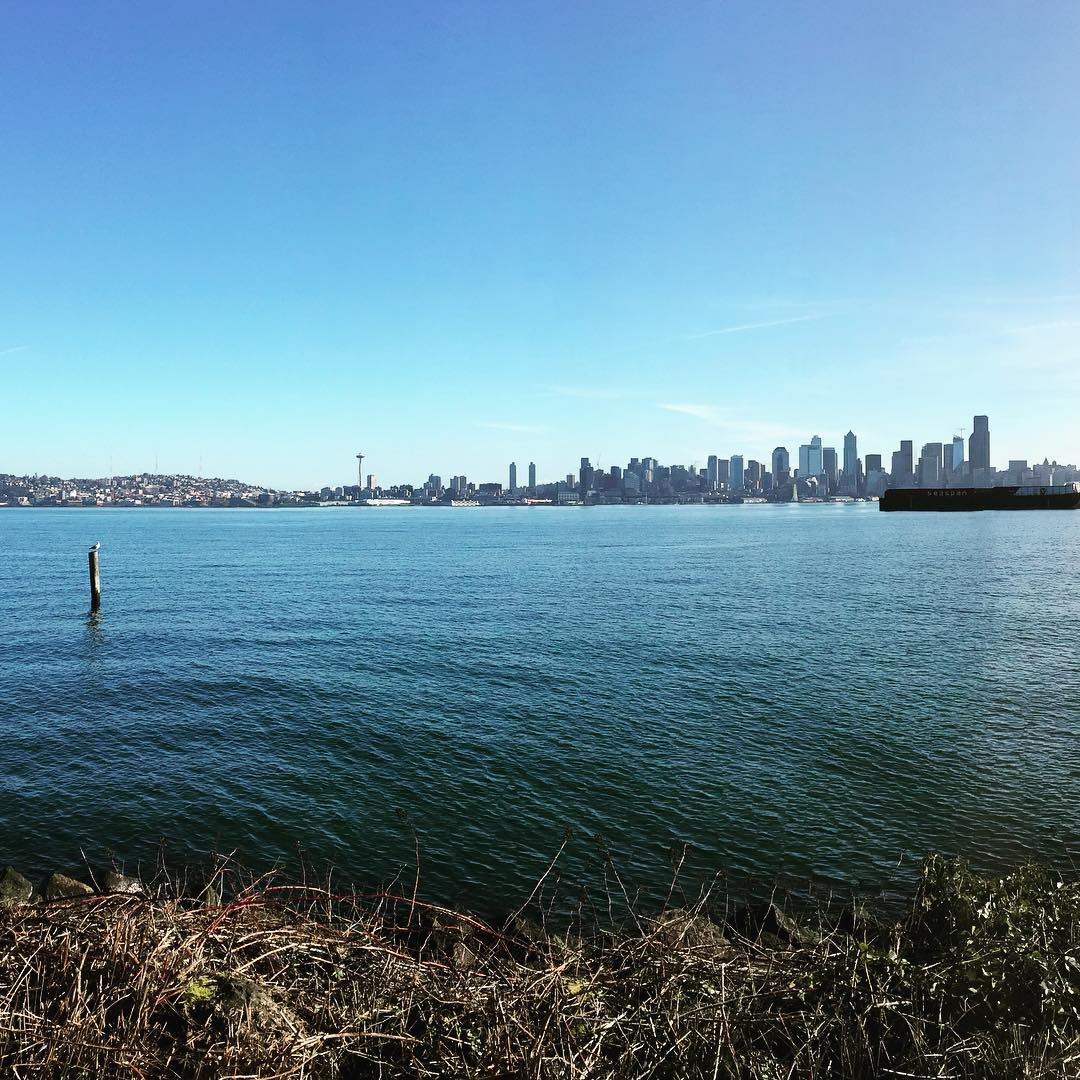 View from West Seattle. 40° and people playing beach volleyball. And scuba diving.